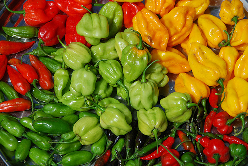 Peppers are a good example of generalists versus specialists.